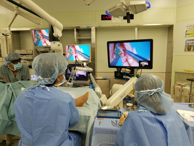 と 形成 は 外科